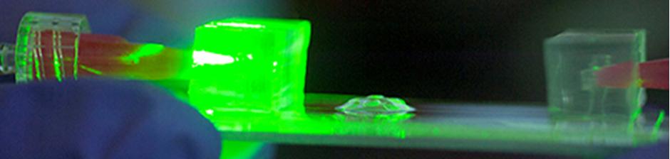 biopolymer-logo
